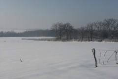 zima-XII-014
