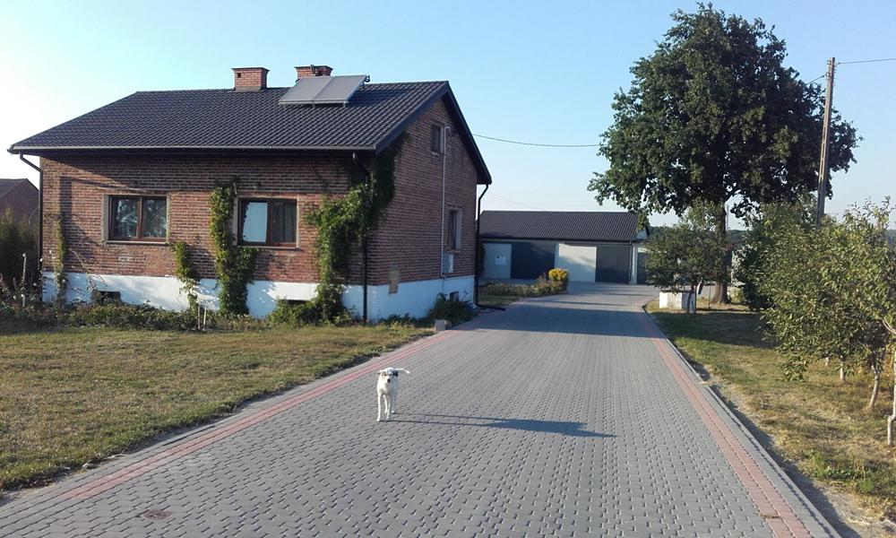 Agrovilla2