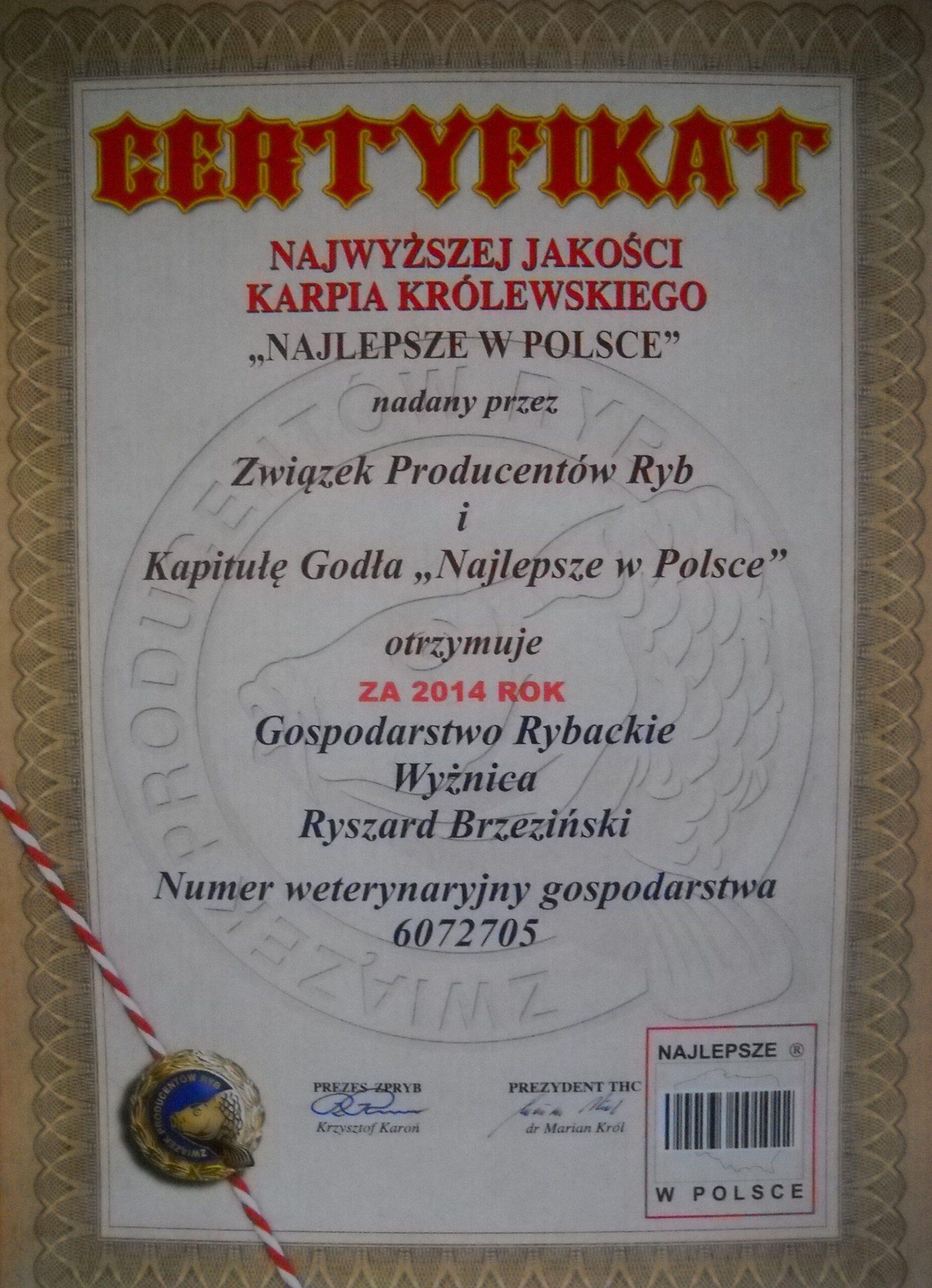 certyfikat scaled