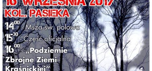 Plakat Podziemie zbrojne Ziemi Kraśnickiej