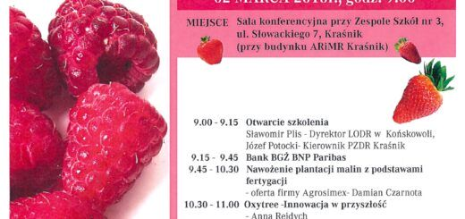 jagodowe scaled