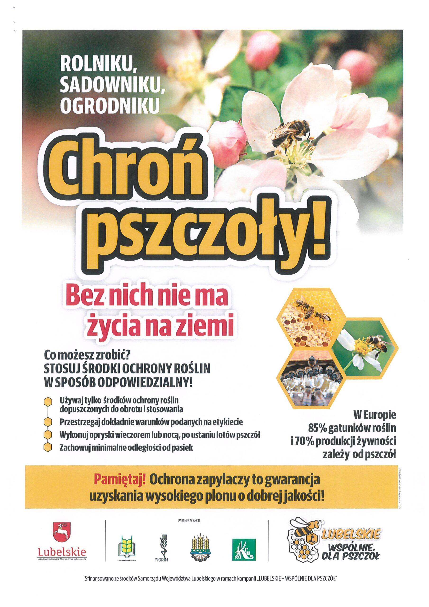 plakat pszczoły